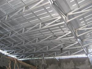 canopy model cremona