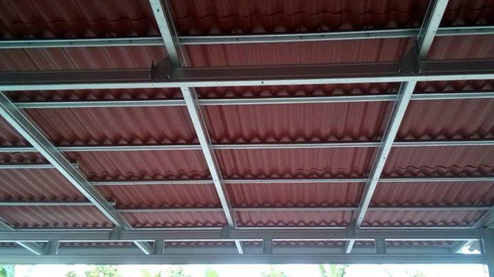 Canopy Gogreen